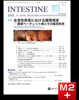 INTESTINE 2019 Vol.23 No.6 全身性疾患における腸管病変-腸管ベーチェット病とその鑑別疾患