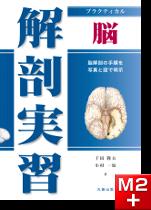 プラクティカル 解剖実習 脳