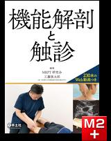 機能解剖と触診