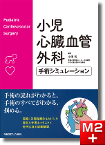 小児心臓血管外科 手術シミュレーション