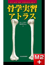 【写真と解説】 骨学実習アトラス