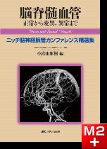 脳脊髄血管 正常から変異,異常まで
