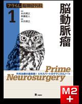 プライム脳神経外科 1 脳動脈瘤