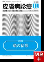皮膚病診療Vol39, No.11(2017年11月号)