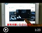 動画リンク